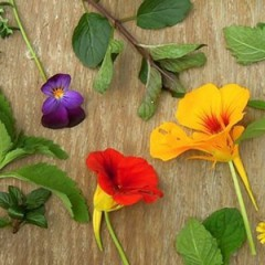 Edible Flower in Hong Kong – From garden to table