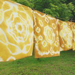 巨人染 - 薑黃紥染 Giant Tie Dye - Turmeric Tie Dye