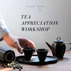 Tea Appreciation Workshop 品茶入門一課