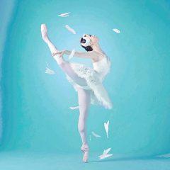 秋季芭蕾舞工作坊:《天鵝湖》Autumn Ballet Workshop: Swan Lake